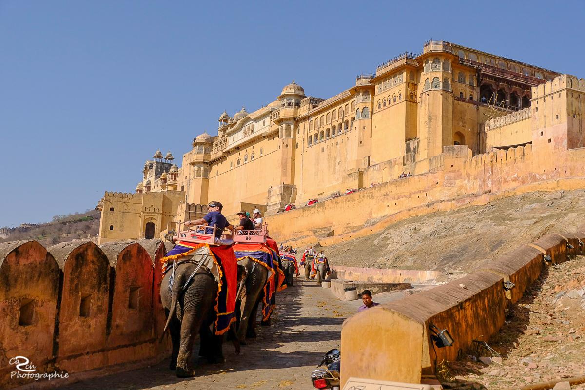 Carsten Schröder Fotografie Indienreise